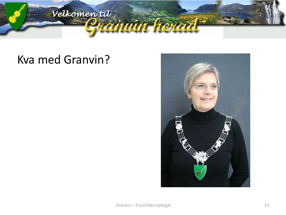 Kva med Granvin? Granvin – framtidas trebygd13