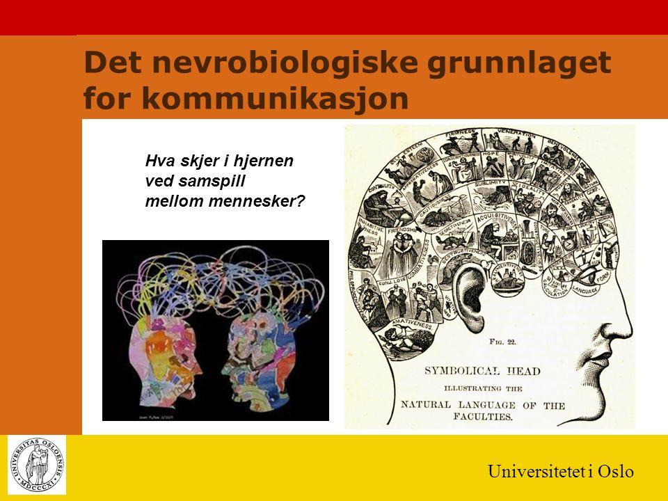 Universitetet i Oslo Det nevrobiologiske grunnlaget for kommunikasjon Hva skjer i hjernen ved samspill mellom mennesker