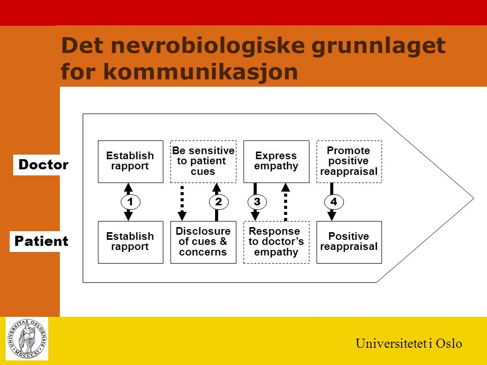 Universitetet i Oslo Establish rapport Doctor Patient 123 Establish rapport Be sensitive to patient cues Express empathy Promote positive reappraisal Disclosure of cues & concerns Response to doctor's empathy Positive reappraisal 4 Det nevrobiologiske grunnlaget for kommunikasjon