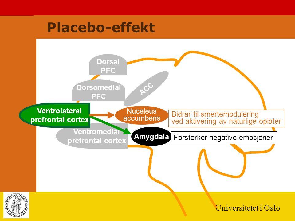 Universitetet i Oslo ACC Amygdala Dorsal PFC Dorsomedial PFC Ventromedial prefrontal cortex Ventrolateral prefrontal cortex Forsterker negative emosjoner Nuceleus accumbens Bidrar til smertemodulering ved aktivering av naturlige opiater Placebo-effekt