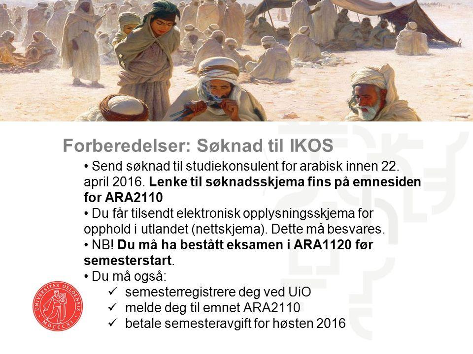 Forberedelser: Søknad til IKOS Send søknad til studiekonsulent for arabisk innen 22.