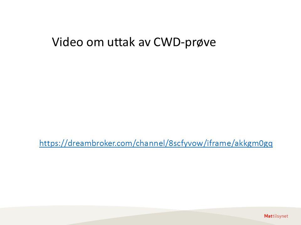 https://dreambroker.com/channel/8scfyvow/iframe/akkgm0gq Video om uttak av CWD-prøve