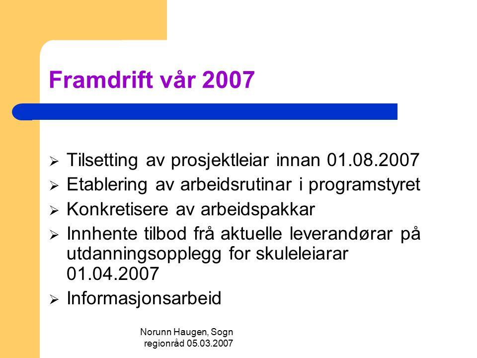 Norunn Haugen, Sogn regionråd 05.03.2007 Framdrift vår 2007  Tilsetting av prosjektleiar innan 01.08.2007  Etablering av arbeidsrutinar i programsty