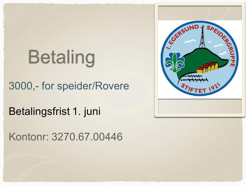 Betaling 3000,- for speider/Rovere Betalingsfrist 1. juni Kontonr: 3270.67.00446