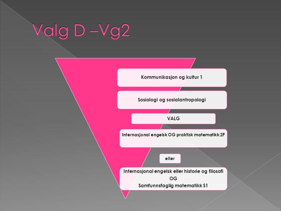 Kommunikasjon og kultur 3Sosialkunnskap Avhengig av fag du valgte i Vg2: Samfunnsfaglig matematikk S2 (hvis S1) Samfunnsfaglig engelsk (hvis 2P og Internasjonal eng.)