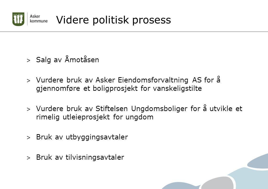 Videre politisk prosess > Salg av Åmotåsen > Vurdere bruk av Asker Eiendomsforvaltning AS for å gjennomføre et boligprosjekt for vanskeligstilte > Vur