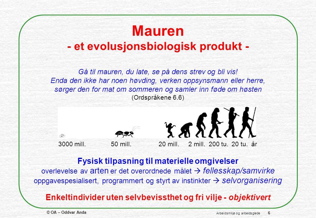 © OA – Oddvar Anda 6 Arbeidsmiljø og arbeidsglede Mauren - et evolusjonsbiologisk produkt - Gå til mauren, du late, se på dens strev og bli vis.