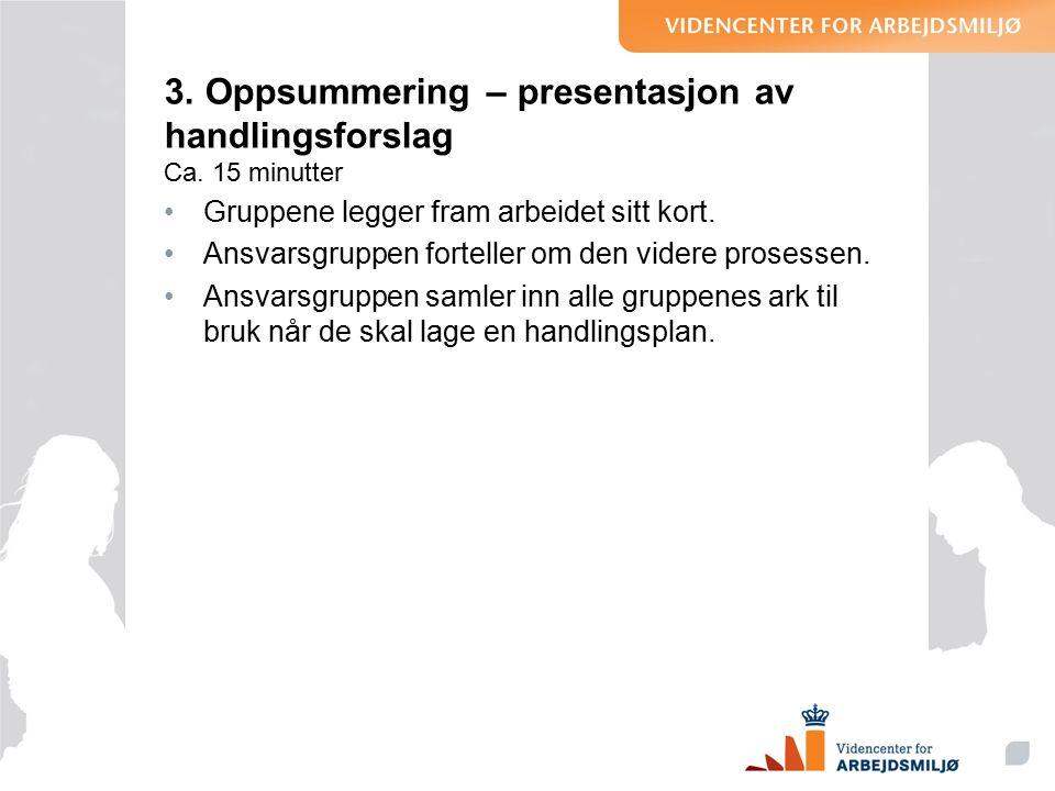3. Oppsummering – presentasjon av handlingsforslag Ca.