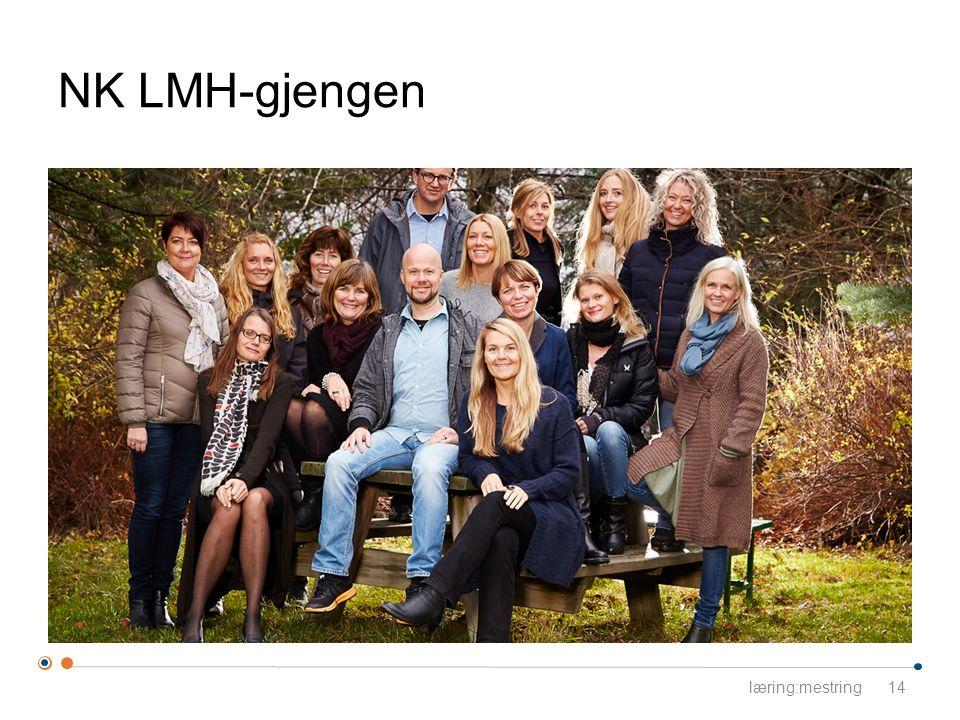 NK LMH-gjengen læring:mestring14