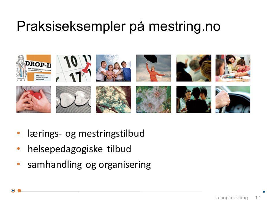 Praksiseksempler på mestring.no lærings- og mestringstilbud helsepedagogiske tilbud samhandling og organisering læring:mestring17