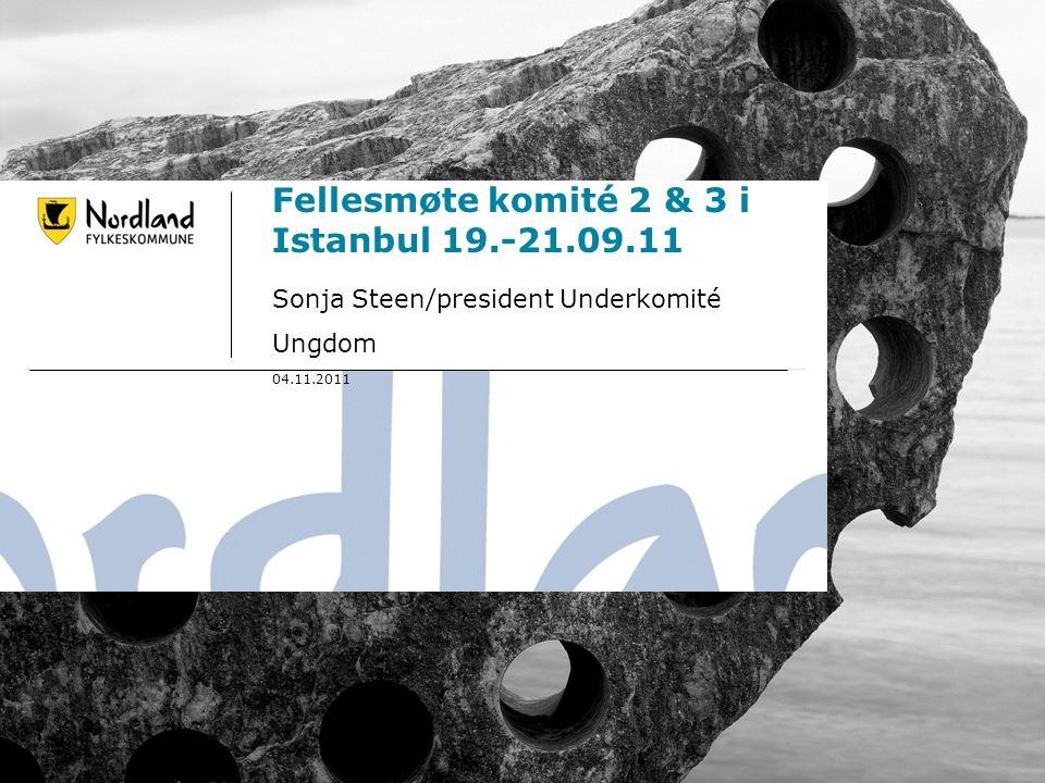 26.09.20161 Fellesmøte komité 2 & 3 i Istanbul 19.-21.09.11 Sonja Steen/president Underkomité Ungdom 04.11.2011