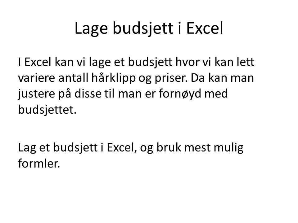 Lage budsjett i Excel I Excel kan vi lage et budsjett hvor vi kan lett variere antall hårklipp og priser. Da kan man justere på disse til man er fornø