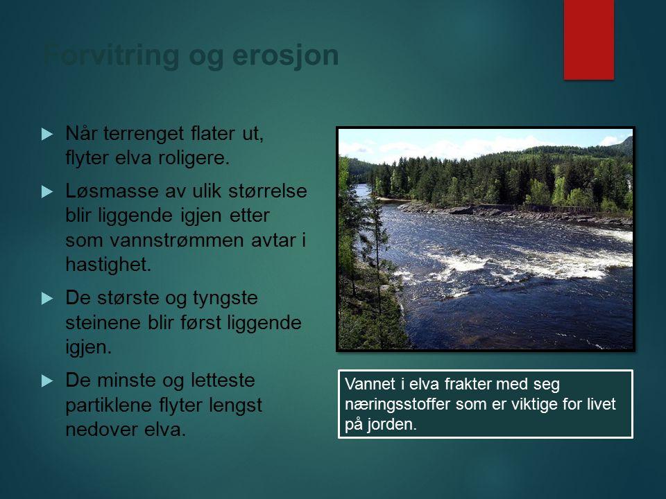 Forvitring og erosjon  Når terrenget flater ut, flyter elva roligere.  Løsmasse av ulik størrelse blir liggende igjen etter som vannstrømmen avtar i