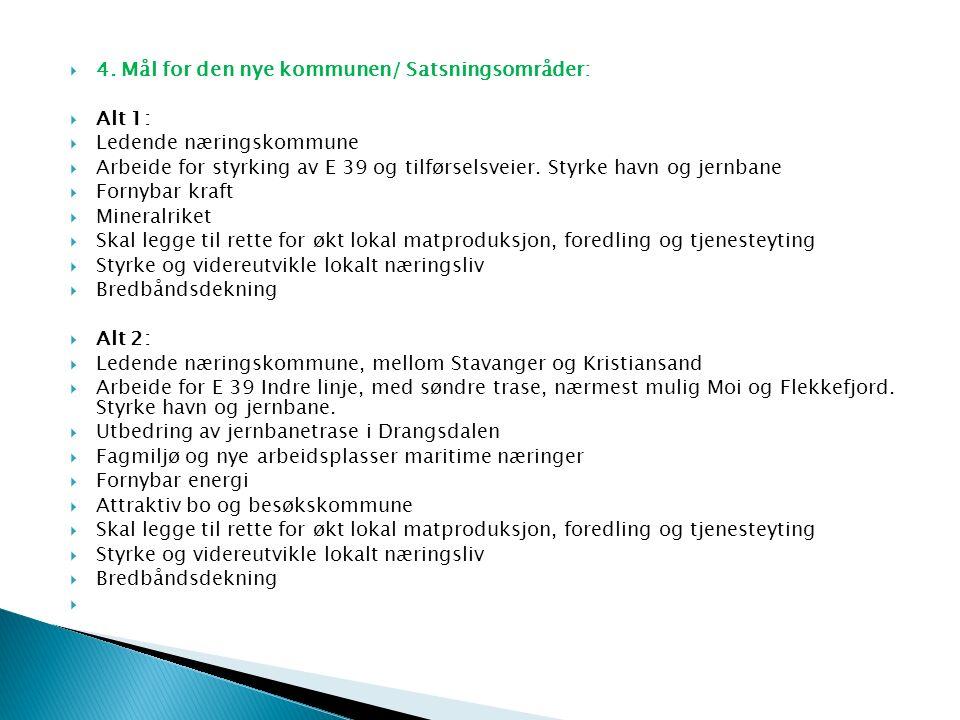  4. Mål for den nye kommunen/ Satsningsområder:  Alt 1:  Ledende næringskommune  Arbeide for styrking av E 39 og tilførselsveier. Styrke havn og j
