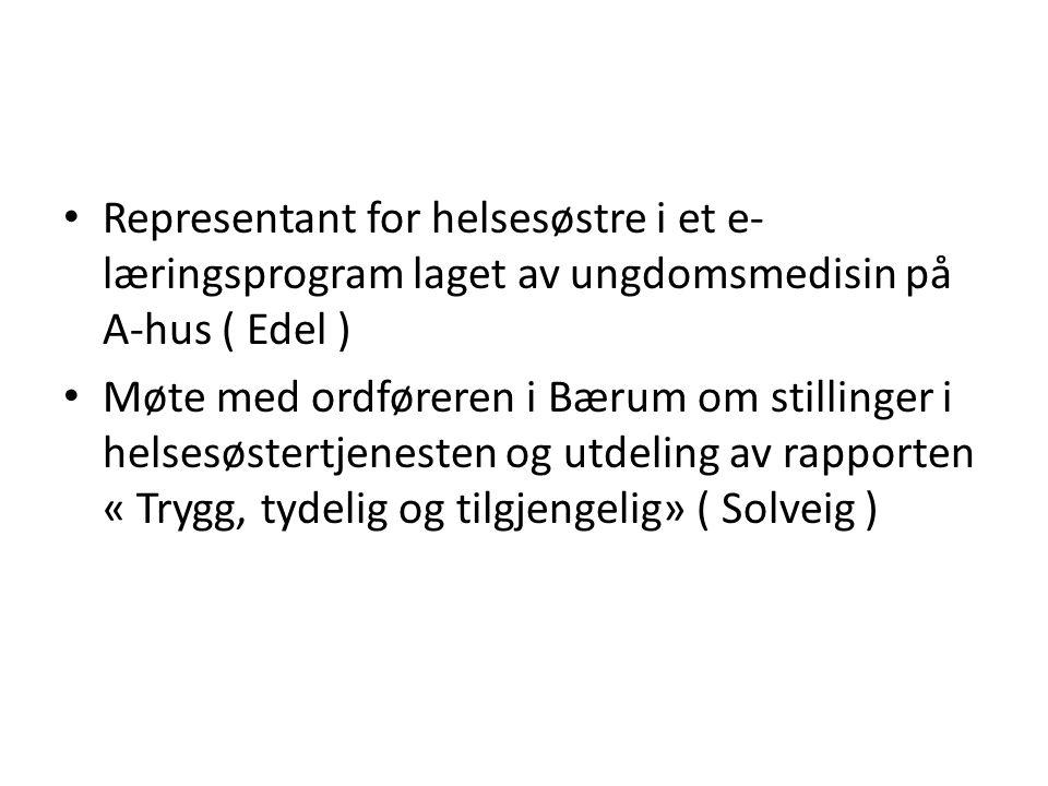 Representant for helsesøstre i et e- læringsprogram laget av ungdomsmedisin på A-hus ( Edel ) Møte med ordføreren i Bærum om stillinger i helsesøstertjenesten og utdeling av rapporten « Trygg, tydelig og tilgjengelig» ( Solveig )