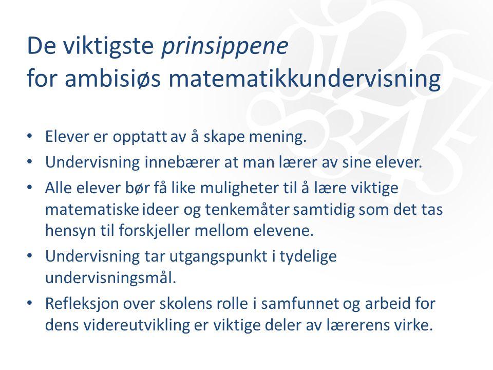 De viktigste prinsippene for ambisiøs matematikkundervisning Elever er opptatt av å skape mening.