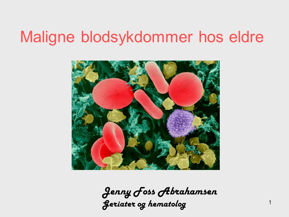 Maligne blodsykdommer hos eldre Jenny Foss Abrahamsen Geriater og hematolog 1