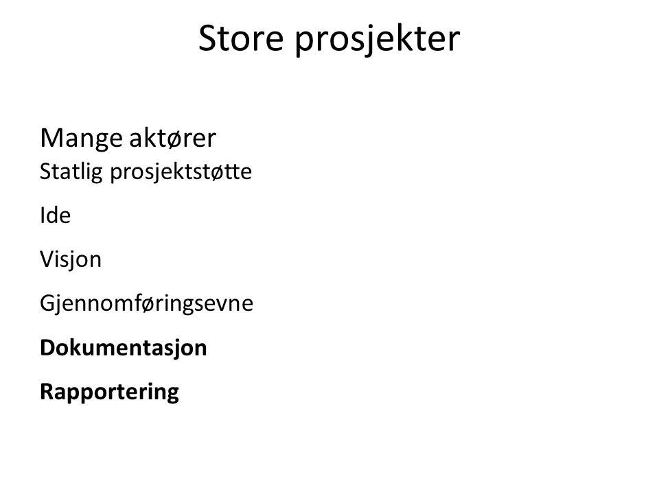 Store prosjekter Mange aktører Statlig prosjektstøtte Ide Visjon Gjennomføringsevne Dokumentasjon Rapportering