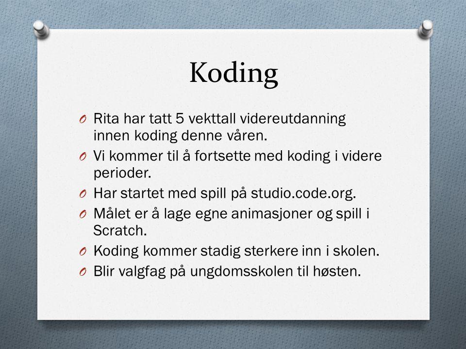Koding O Rita har tatt 5 vekttall videreutdanning innen koding denne våren.