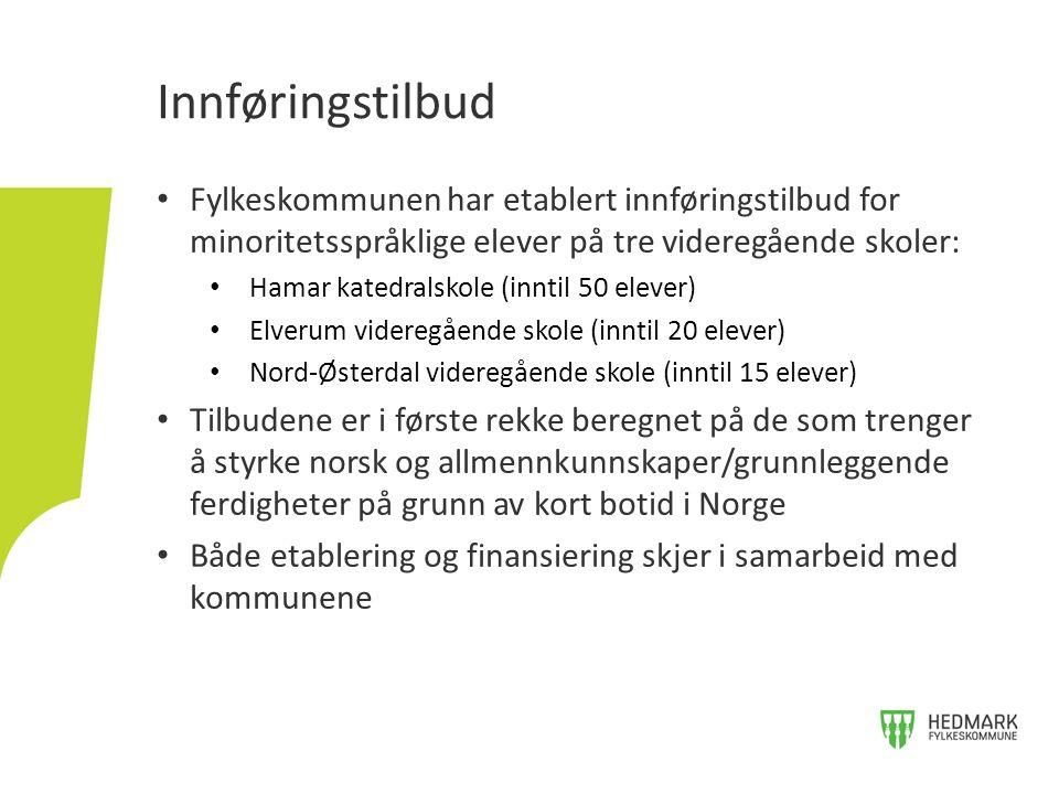 Fylkeskommunen har etablert innføringstilbud for minoritetsspråklige elever på tre videregående skoler: Hamar katedralskole (inntil 50 elever) Elverum