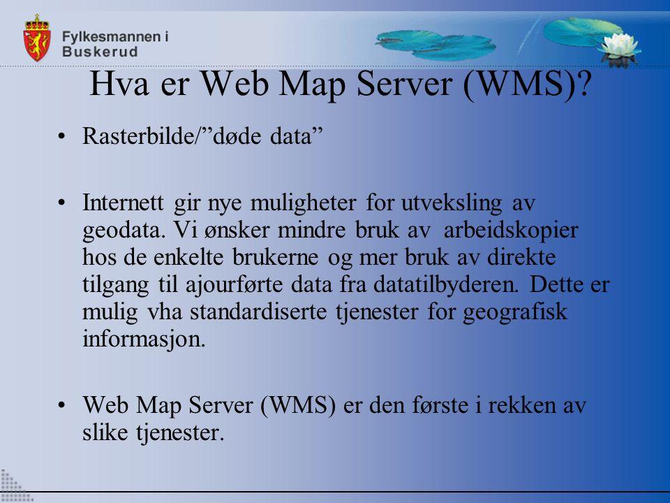 Hva er Web Map Server (WMS).