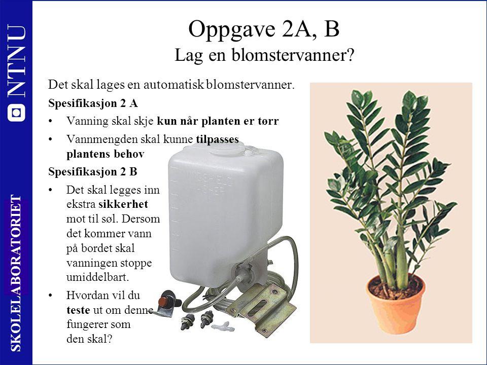 5 SKOLELABORATORIET Oppgave 2A, B Lag en blomstervanner.