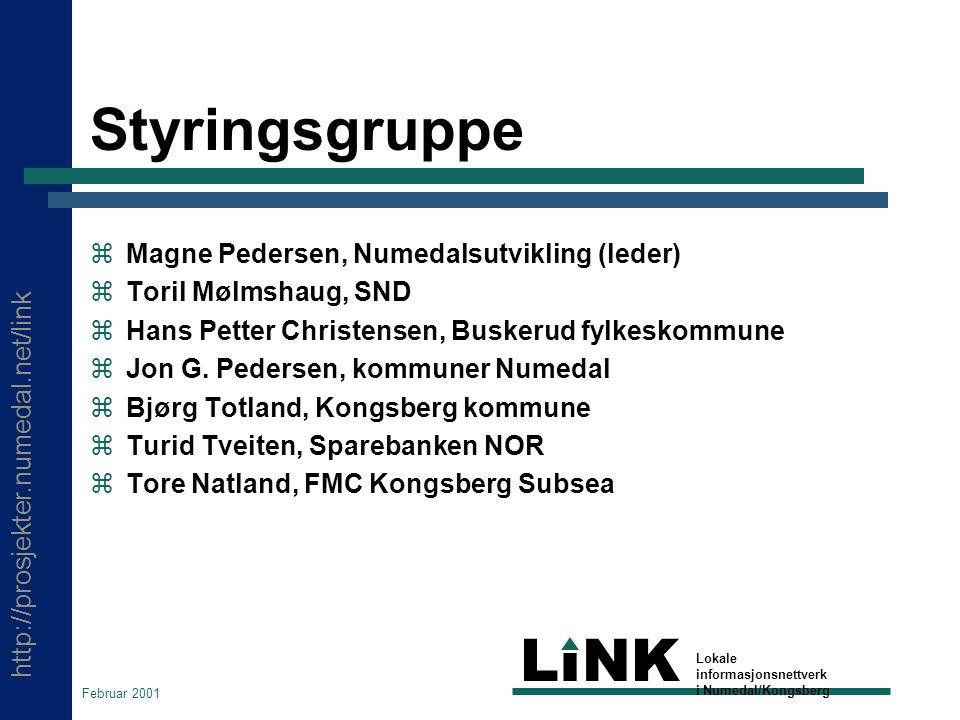 http://prosjekter.numedal.net/link LINK Lokale informasjonsnettverk i Numedal/Kongsberg Februar 2001 Styringsgruppe  Magne Pedersen, Numedalsutvikling (leder)  Toril Mølmshaug, SND  Hans Petter Christensen, Buskerud fylkeskommune  Jon G.