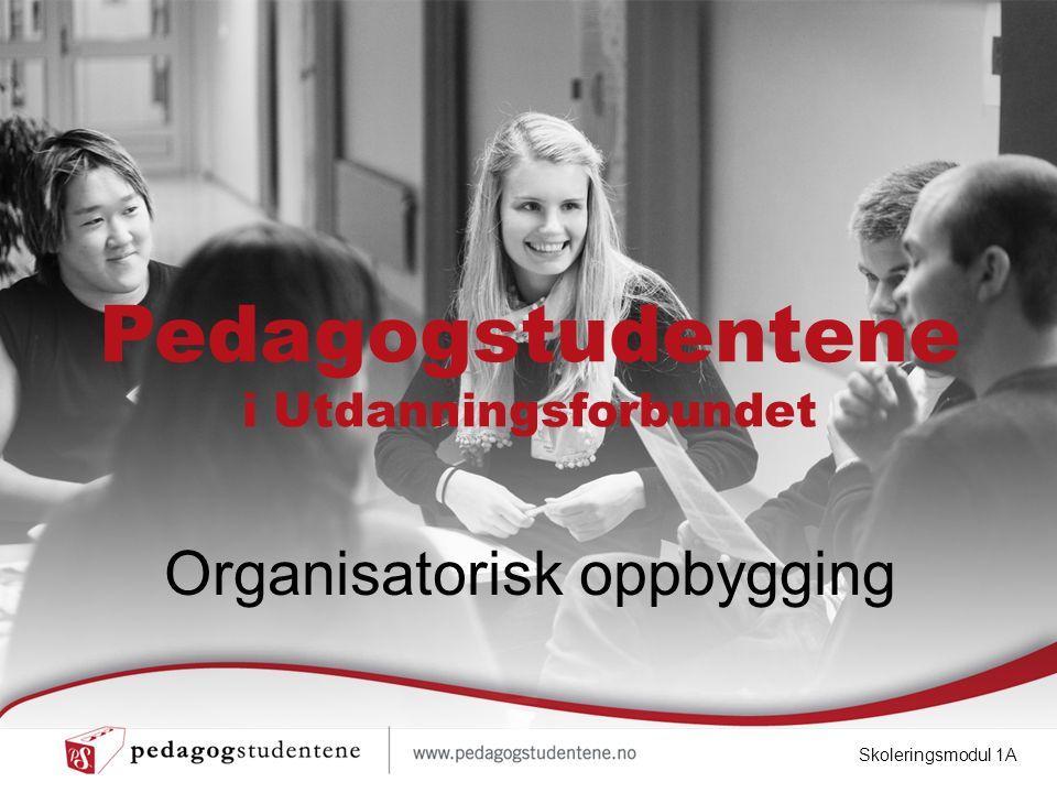 Pedagogstudentene i Utdanningsforbundet Organisatorisk oppbygging Skoleringsmodul 1A