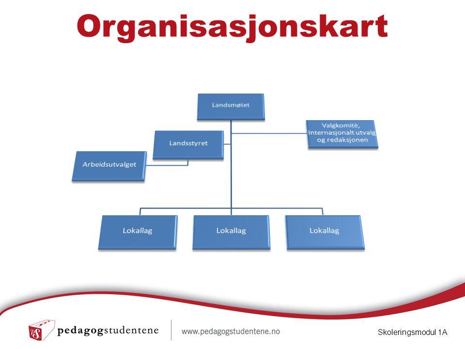 Organisasjonskart Skoleringsmodul 1A