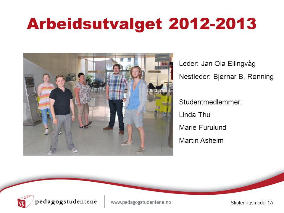 Arbeidsutvalget 2012-2013 Skoleringsmodul 1A Leder: Jan Ola Ellingvåg Nestleder: Bjørnar B.