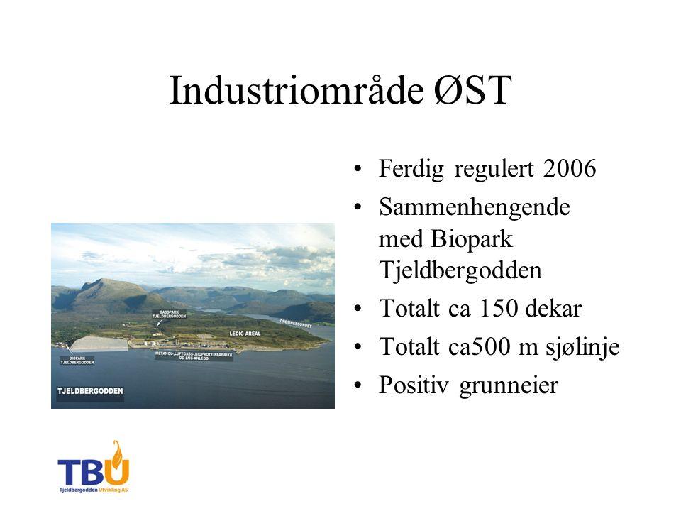 Industriområde ØST Ferdig regulert 2006 Sammenhengende med Biopark Tjeldbergodden Totalt ca 150 dekar Totalt ca500 m sjølinje Positiv grunneier