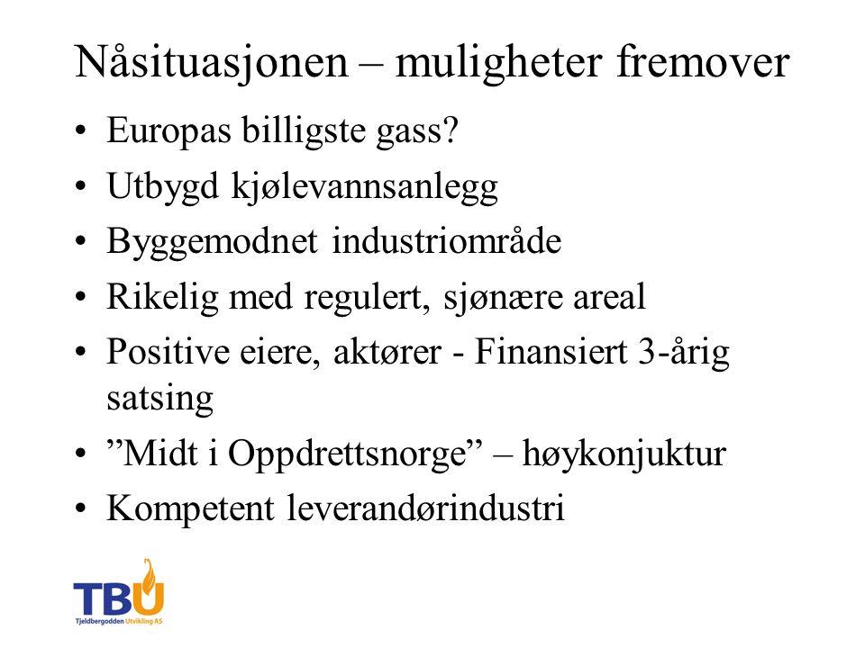 Nåsituasjonen – muligheter fremover Europas billigste gass.