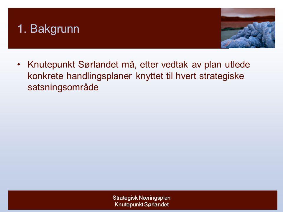 Strategisk Næringsplan Knutepunkt Sørlandet 1.