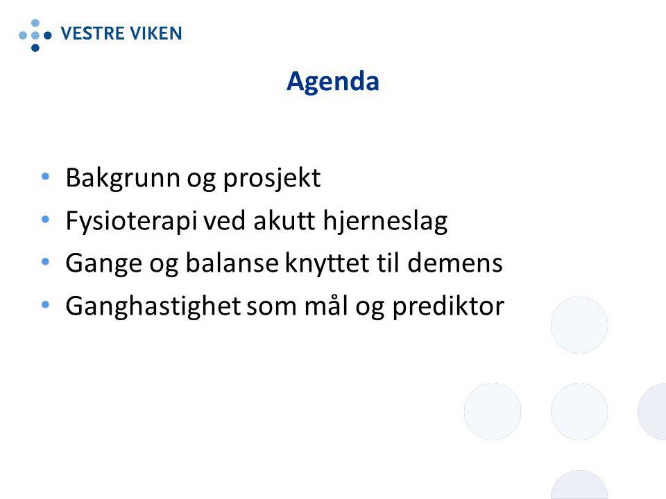 Agenda Bakgrunn og prosjekt Fysioterapi ved akutt hjerneslag Gange og balanse knyttet til demens Ganghastighet som mål og prediktor