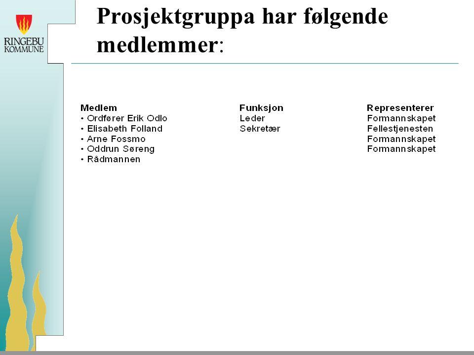 Prosjektgruppa har følgende medlemmer: