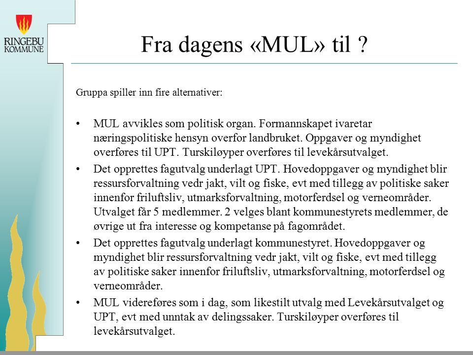 Fra dagens «MUL» til . Gruppa spiller inn fire alternativer: MUL avvikles som politisk organ.
