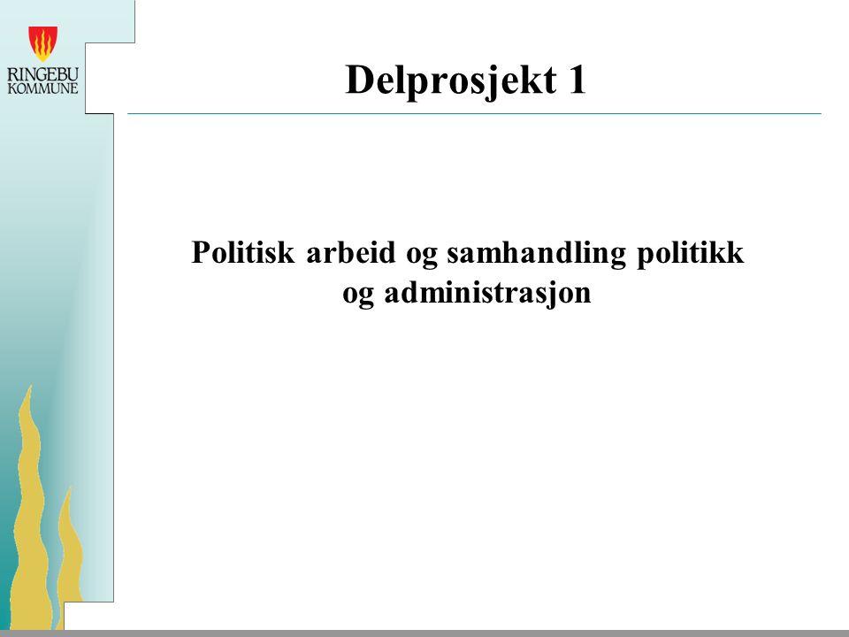 Delprosjekt 1 Politisk arbeid og samhandling politikk og administrasjon