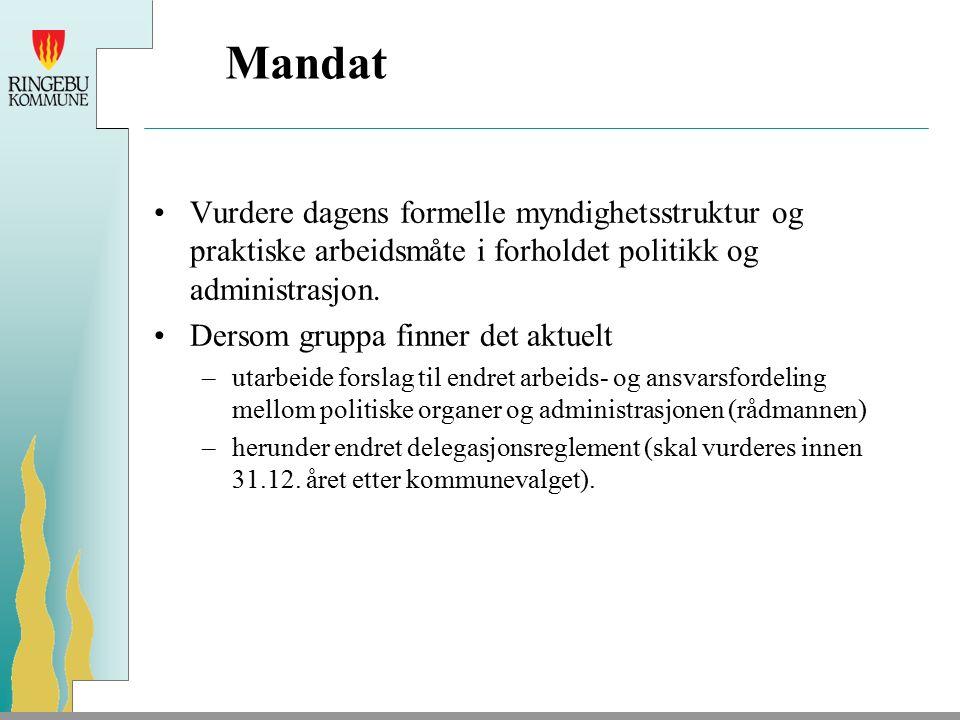 Mandat Vurdere dagens formelle myndighetsstruktur og praktiske arbeidsmåte i forholdet politikk og administrasjon.