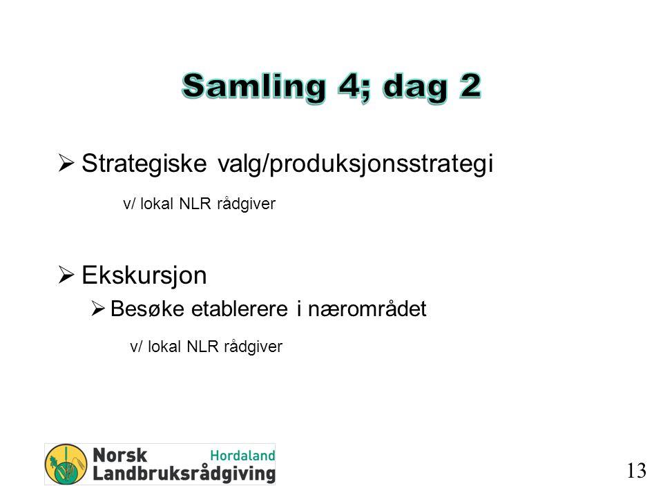  Strategiske valg/produksjonsstrategi v/ lokal NLR rådgiver  Ekskursjon  Besøke etablerere i nærområdet v/ lokal NLR rådgiver 13