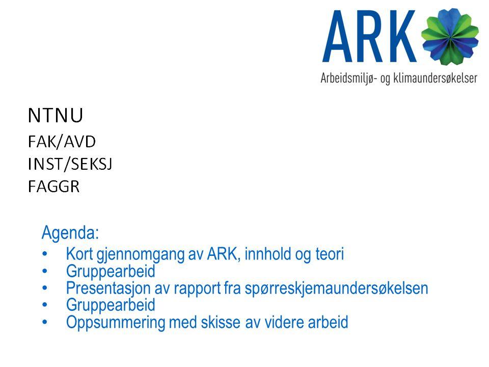 Agenda: Kort gjennomgang av ARK, innhold og teori Gruppearbeid Presentasjon av rapport fra spørreskjemaundersøkelsen Gruppearbeid Oppsummering med skisse av videre arbeid