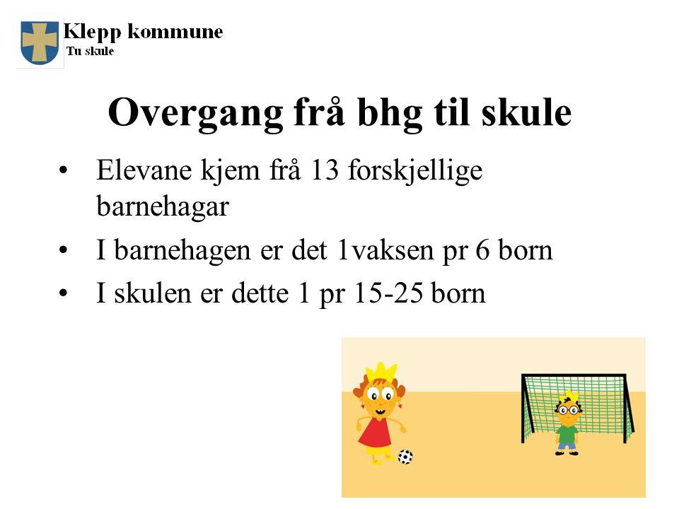 Overgang frå bhg til skule Elevane kjem frå 13 forskjellige barnehagar I barnehagen er det 1vaksen pr 6 born I skulen er dette 1 pr 15-25 born 8