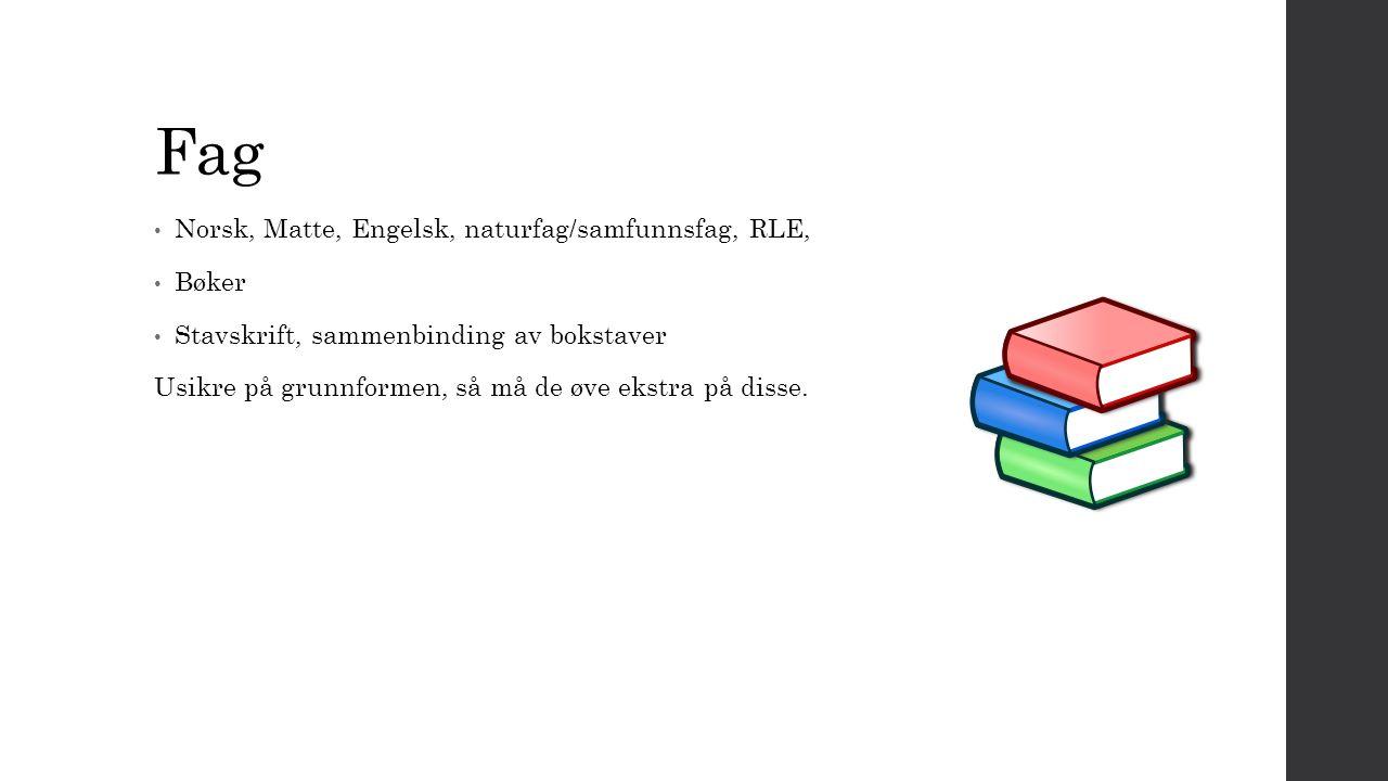 Fag Norsk, Matte, Engelsk, naturfag/samfunnsfag, RLE, Bøker Stavskrift, sammenbinding av bokstaver Usikre på grunnformen, så må de øve ekstra på disse.