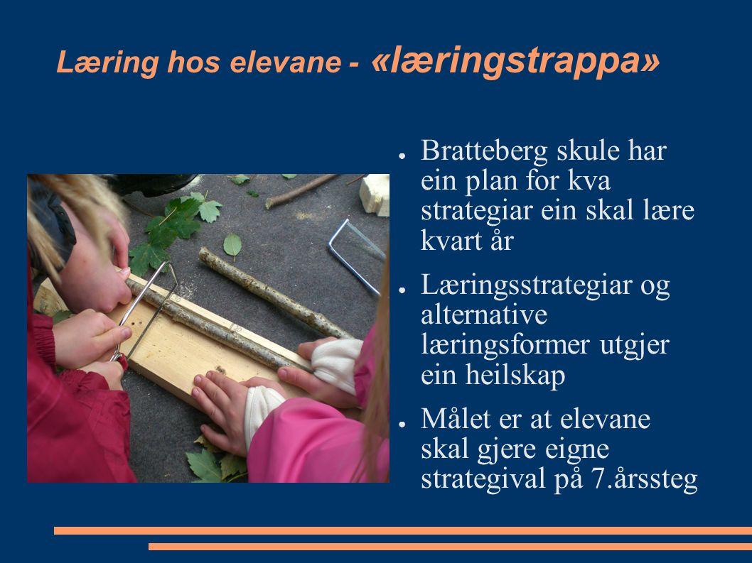 Læring hos elevane - «læringstrappa» ● Bratteberg skule har ein plan for kva strategiar ein skal lære kvart år ● Læringsstrategiar og alternative læringsformer utgjer ein heilskap ● Målet er at elevane skal gjere eigne strategival på 7.årssteg