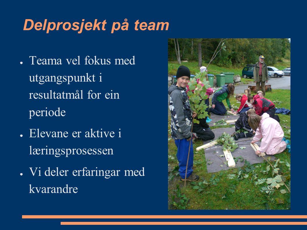 Delprosjekt på team ● Teama vel fokus med utgangspunkt i resultatmål for ein periode ● Elevane er aktive i læringsprosessen ● Vi deler erfaringar med kvarandre