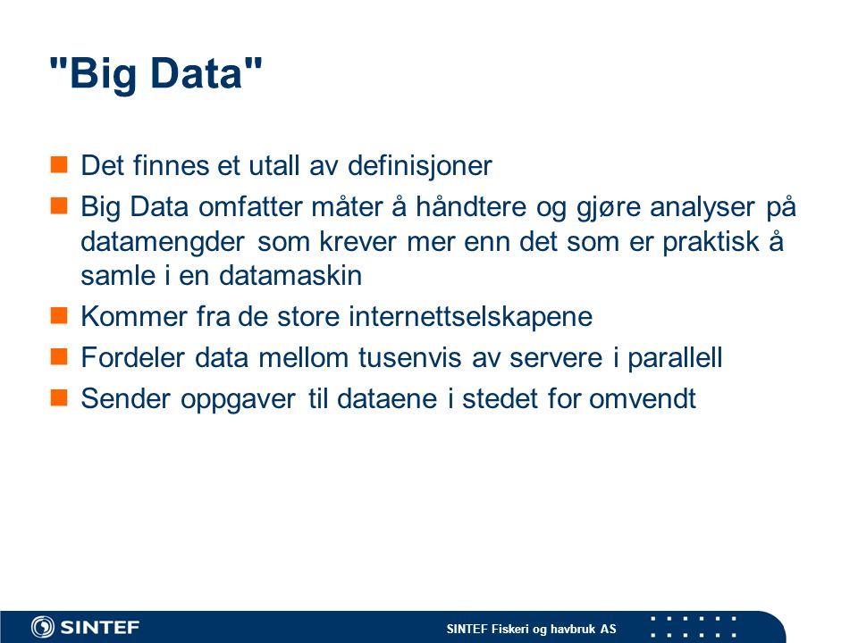 SINTEF Fiskeri og havbruk AS Big Data Det finnes et utall av definisjoner Big Data omfatter måter å håndtere og gjøre analyser på datamengder som krever mer enn det som er praktisk å samle i en datamaskin Kommer fra de store internettselskapene Fordeler data mellom tusenvis av servere i parallell Sender oppgaver til dataene i stedet for omvendt