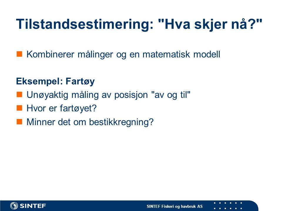 SINTEF Fiskeri og havbruk AS Tilstandsestimering: Hva skjer nå? Kombinerer målinger og en matematisk modell Eksempel: Fartøy Unøyaktig måling av posisjon av og til Hvor er fartøyet.