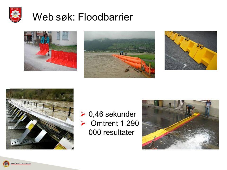 Web søk: Floodbarrier  0,46 sekunder  Omtrent 1 290  000 resultater
