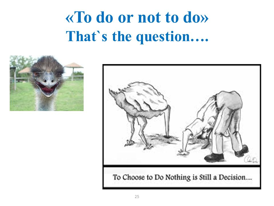 «To do or not to do» That`s the question….. 25