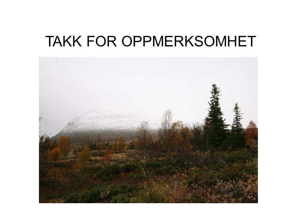 TAKK FOR OPPMERKSOMHET