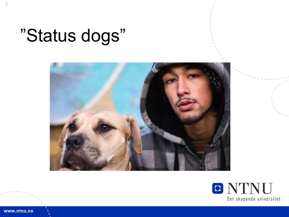 "7 ""Status dogs"""